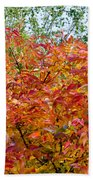 Colorful Leaves In Autumn Beach Towel