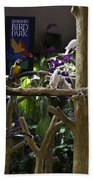 Colorful Macaw And Other Birds At The Jurong Bird Park In Singapore Beach Towel