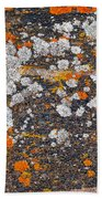 Colorful Moss Spots On A Gneiss Rock Beach Towel