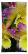 Colorful Orchids Beach Towel