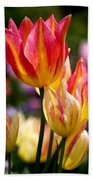 Colorful Tulips Beach Towel