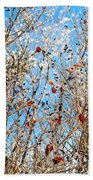 Colorful Winter Wonderland Beach Towel