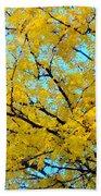 Colors Of Fall 1 Beach Towel