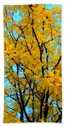 Colors Of Fall - Smatter Beach Towel