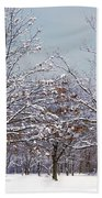 Colors Of Winter Beach Towel