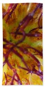 Colour Convolution Beach Towel