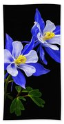 Columbine Duet Beach Towel