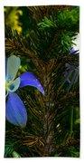Columbine Flowers And Pine Tree Beach Towel