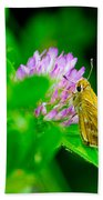 Common Banded Skipper Beach Towel