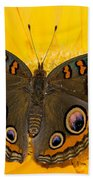 Common Buckeye Butterfly Beach Towel