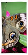 Common Buckeye Junonia Coenia Beach Towel