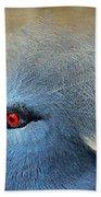 Common Crowned Pigeon Beach Towel