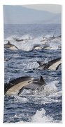 Common Dolphins Surfacing San Diego Beach Towel by Richard Herrmann