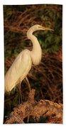 Common Egret Of Palestine Lake Beach Towel