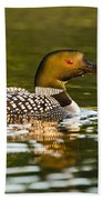 Common Loon Pictures 145 Beach Towel