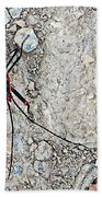 Common Red Bug Along The Seti River Road-nepal  Beach Towel