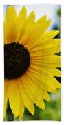 Common Sunflower Beach Towel