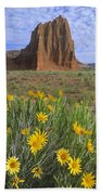 Common Sunflowers And  Temple Of The Sun Beach Towel by Tim Fitzharris
