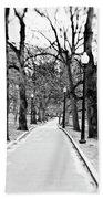 Commons Park Pathway Beach Towel by Scott Pellegrin