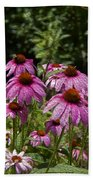Cone Flower And Bee Beach Towel