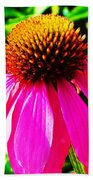 Cone Flower Beach Towel