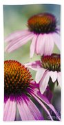 Coneflower Jewel Tones - Echinacea Beach Towel