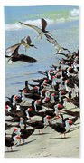 Congregating Skimmers Beach Towel