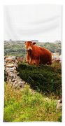 Connemara Cow Beach Towel