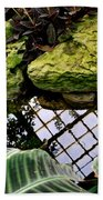 Conservatory Reflections Beach Towel