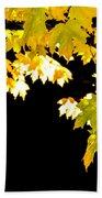 Contrast Of Autumn, Quincy California Beach Sheet