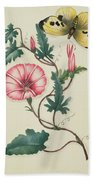 Convolvulus With Yellow Butterfly Beach Towel