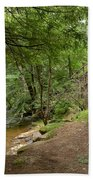 Cook Forest Toms Run Steps Beach Towel