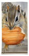 Cookie Time- Squirrel Eating A Cookie Beach Towel
