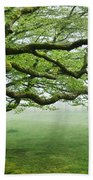Cool Misty Day At Blackbury Camp Beach Towel