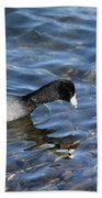 Coot Beach Towel