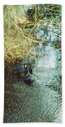 Coots Beach Towel