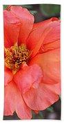 Coral Desert Rose Beach Towel