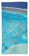 Coral Reef Capricornia Cays Np Beach Towel