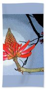 Coral Tree Beach Towel by Ben and Raisa Gertsberg