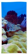 Corals Underwater Beach Towel