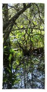 Corkscrew Swamp 3 Beach Towel