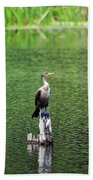 Cormorant Chilling Beach Towel