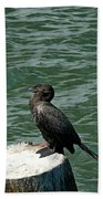 Cormorant Beach Towel