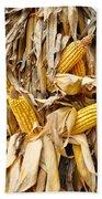 Corn Shock - Sign Of Autumn Beach Towel