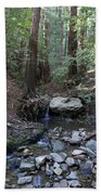 Corte Madera Creek On Mt. Tam In 2008 Beach Towel