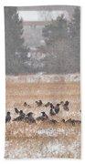 Corvus Field Beach Towel
