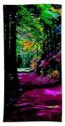 Cosmic Energy Of A Redwood Forest On Mt Tamalpais Beach Towel