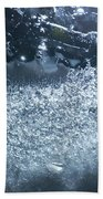 Cosmos 011 By Jammer Beach Towel