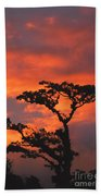Costa Rican Sunset Beach Towel