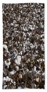 Cotton By The Acre In Limestone County Beach Towel